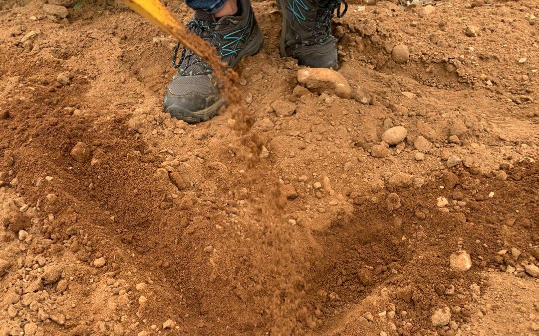 La fertilidad del suelo y sus características