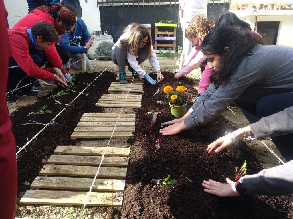 Alumnos plantando