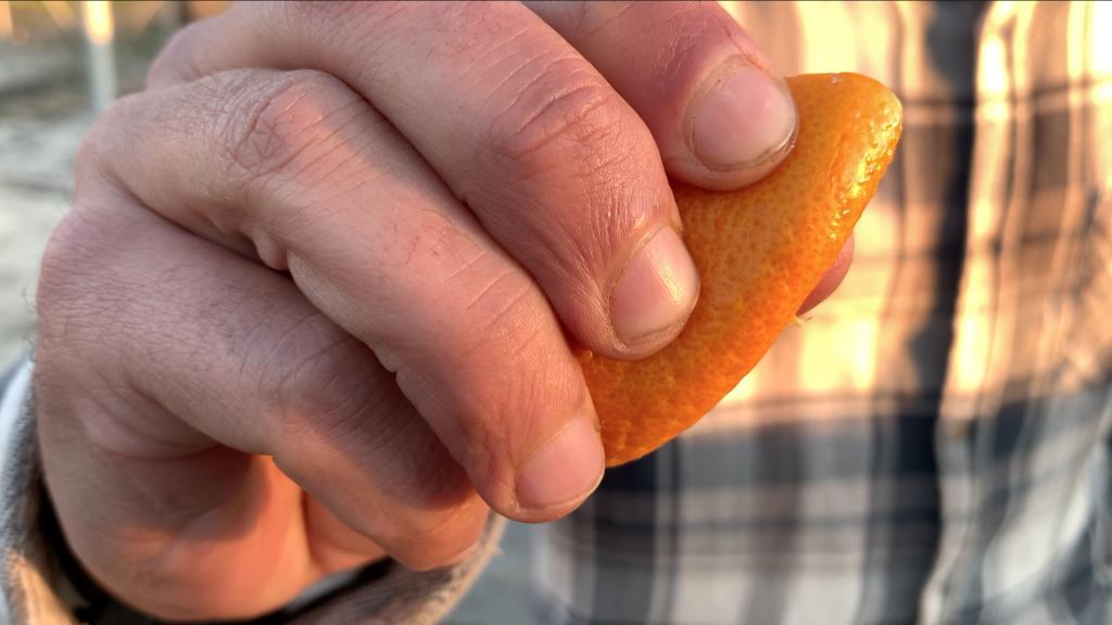 Cáscara naranja