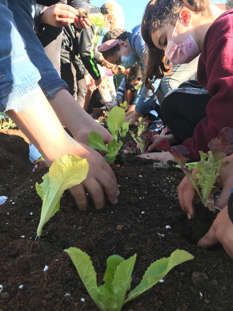 Niños aprendiendo a plantar en su huerto escolar