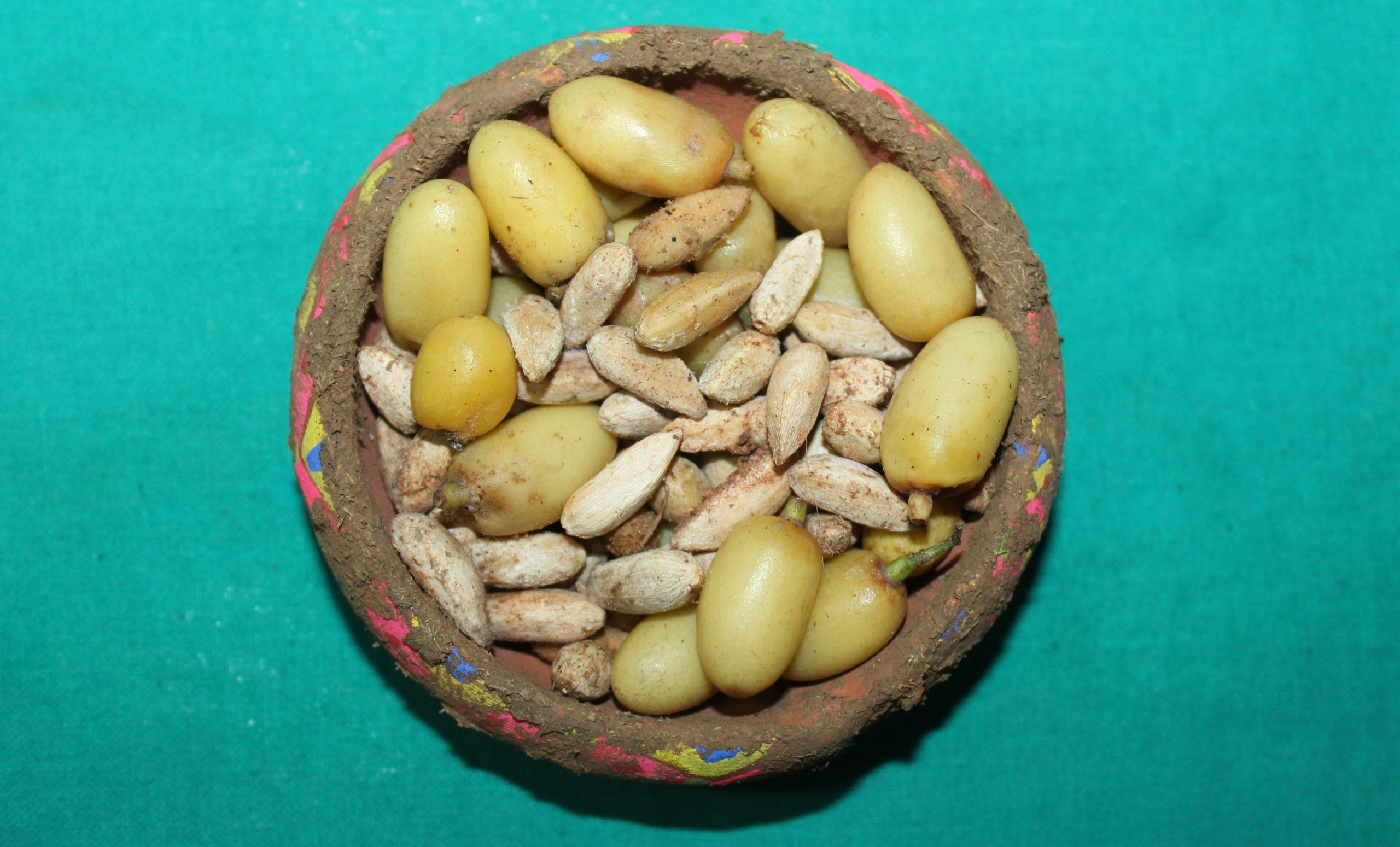 Aceite de neem en el huerto