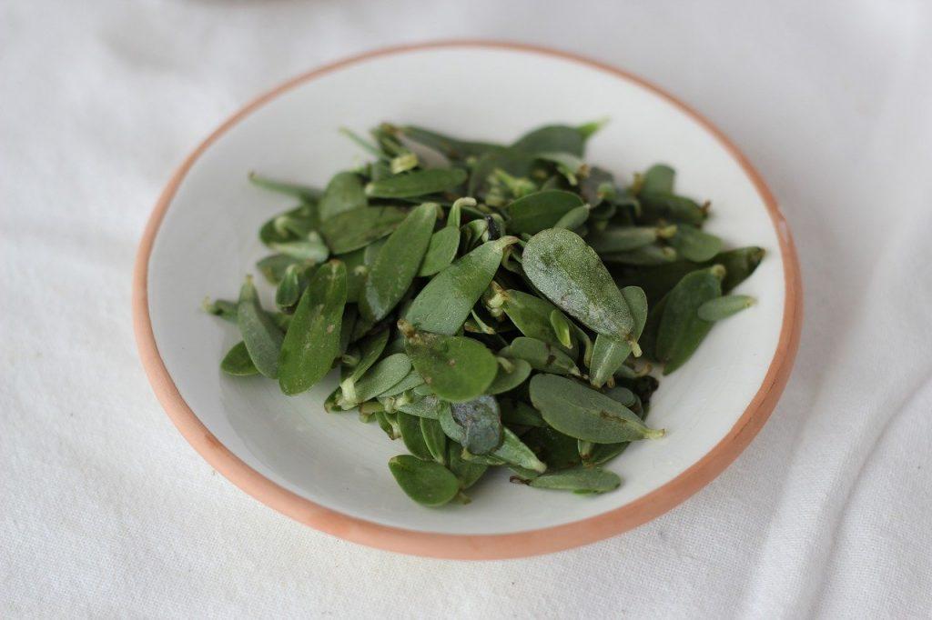 Plato con hojas de verdolaga